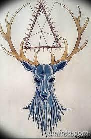 эскиз тату олень 23022019 014 Sketch Tattoo Deer Tatufotocom