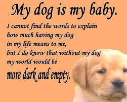 Quotes About Dogs And Friendship Unique Quotes About Dogs Unique 48 Dog Quotes For People Who Love Dogs