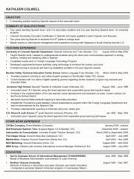 Breakupus Unusual Executive Resume Example Clevel Sample Resumes How Long  Should An Executive Resume Be