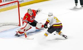 Rockford Icehogs Game On January 5 Vs Chicago Wolves Or January 20 Vs Belleville Senators