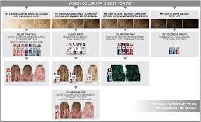 Hair Bleach Level Chart Loreal Paris Colorista Bleach