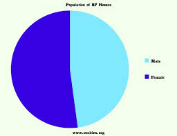 Bf Homes Natural Disaster Risk Profile And Plan