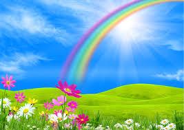 Images Nature Rainbow Sky Grasslands
