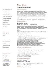Marketing Executive Cv Sample Job Description Sales Campaigns Job
