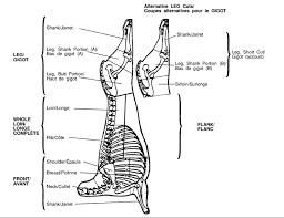 lamb primal cuts. Brilliant Cuts Figure 26 Lamb Carcass Used With Permission Of The CFIA In Primal Cuts M