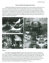 argumentative essay against welfare grad school education essays argumentative essay against welfare