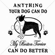 Terrier Size Chart My Boston Terrier Anything Your Dog Can Do T Shirt 7 X L To 14 X Large Pick Size Ebay
