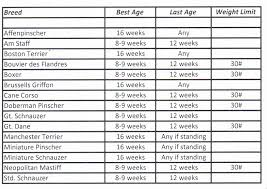 Cane Corso Growth Chart 21 Competent Breed Weight Chart