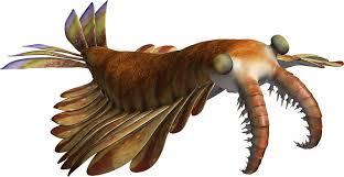 深海生物、恐竜、王蟲ファン必見】地球最古の王・アノマロカリスが可愛すぎる|今日のおすすめ|講談社BOOK倶楽部