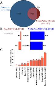 Venn Diagram Bioinformatics Bioinformatic Analyses Of S Palmitoylation In Exosomes A Venn
