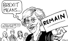 Image result for brexit means brexit