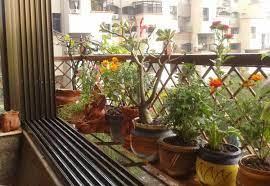 window garden garden ideas india
