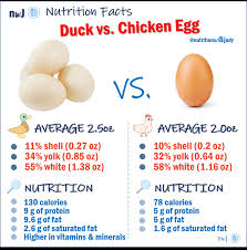 Chicken Egg Nutrition Chart The Incredible Edible Egg Nutrition With Judy