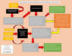 Eeo Process Chart If It Happens To You Sexual Assault On Campus