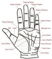 Hand Astrology Malayalam Ikuzo Astrology Palmistry Palm