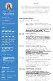 Business Analyst Resume Sample Adorable Analyst Resume Samples VisualCV Resume Samples Database