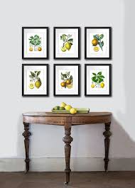 smart lemon wall art fresh 67 best tropical vintage images on pinterest than fresh lemon wall  on tropical wall art sets with 50 perfect lemon wall art sets home