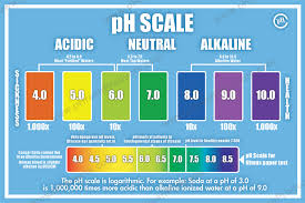 Acid Alkaline Water Chart The Ph Scale Sebastian Projects Alkaline Diet Ph Food