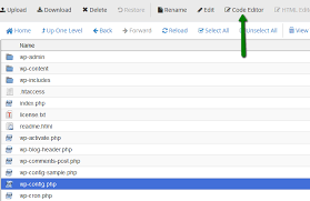 how to edit wp config php file in