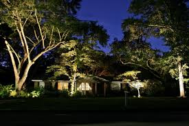 landscape lighting trees. Plain Trees Landscape Lighting Trees Awesome Behind The  House At Night With Low Throughout