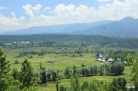 Image result for Redi kupwara