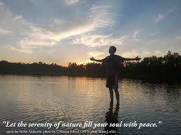 Quotes About Serenity 262 Quotes