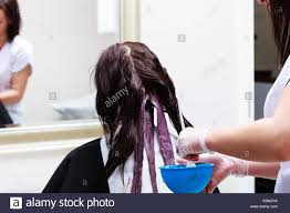 Color Design Hair Colour Professional Female Hairdresser Applying Color To Female