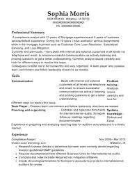 Compliance Analyst Resume Magnificent Moneygram International Compliance Analyst Resume Sample Resume