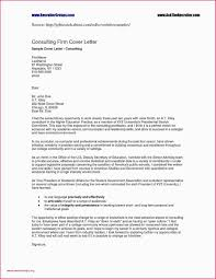 Example Resume Fresh Graduate Information Technology New Cover
