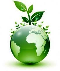 Live a Eco-Friendly Lifestyle by Staying Green