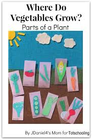 where do vegetables grow gardening craft with free printable vegetable cards