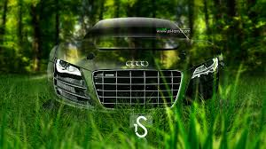 audi r8 crystal nature car