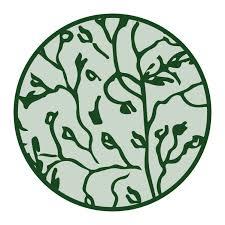 Trifolium michelianum* (Balansa clover)