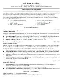 Project Management Resume Keywords It Management Resume Sample It