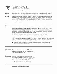 Sample Resume Objective Statements Unique Cna Resume Objective Statement  Examples Uxhandy