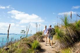 You can see all the historical data and other dates in Hamilton Island Freestyle Cruise Whitsundays