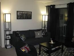 College Living Room Decorating Ideas New Design Inspiration