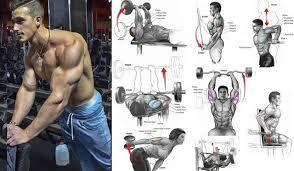 7 triceps training tips strategies