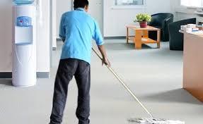 Office Cleaner Cover Letter Sample Clr