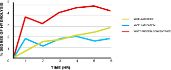 Protein Absorption Chart Editing The Influence Of Protein Amino Acid Supplementation