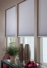 ... Lowes Cordless Blinds Window Blinds Walmart Contemporary Window Roller  Shades Living Room With Black ...