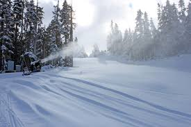 snow report of whistler bc canada