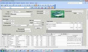 Translation Accounting Software