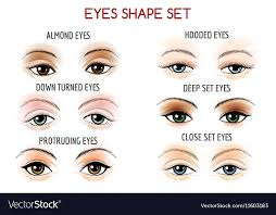 eyes shape set vector image