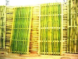 bamboo decorating ideas bamboo wall decor bamboo decoration decoration of bamboo wall bamboo wall decor bamboo