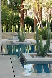 Small Picture 1081 best Succulents and Cacti images on Pinterest Gardening