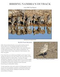 birding tours namibia etosha