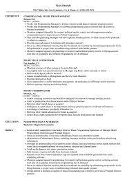 Music Manager Job Description Music Resume Samples Velvet Jobs