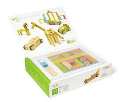 tegu magnetic wooden blocks set tints