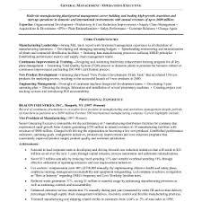 Vp Of Marketing Resume Samples Vice President of Sales Resume         Vp Of Marketing Resume Samples